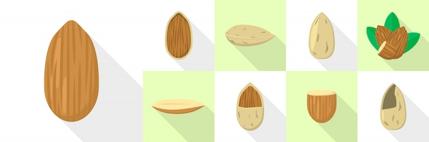 Almond nut icons set, flat style