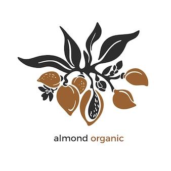 아몬드 열대 상징 농장 농장 예술 모양 바이오 디자인 천연 견과 기름 유기농 우유
