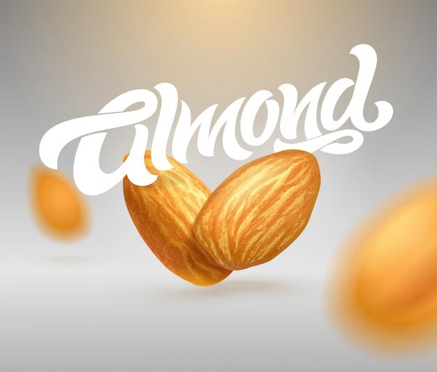 Almond типографика с реалистичной иллюстрацией миндаля