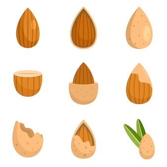 Almond walnut oil seed icons set flat style