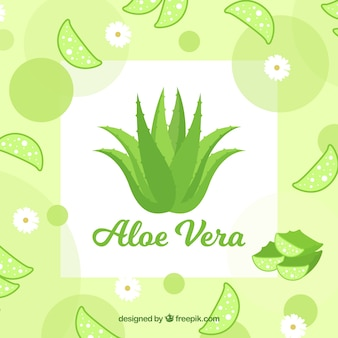 Aloe vera background with leaves and flowers