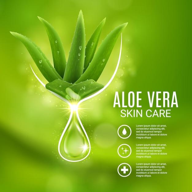 알로에 베라 추출물, 스킨 케어 벡터 포스터, 알로에 식물과 빛나는 방울이 있는 화장품 생산 광고. 카탈로그 또는 잡지를 위한 보습 화장품 미용 제품 젤 또는 바디 로션 광고 디자인