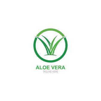 Шаблон логотипа алоэвера
