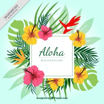 Aloha floral background