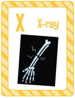 X線用の文字xのアルファベットフラッシュカード