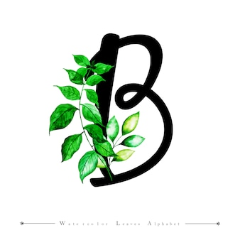 Alphabet letter b with watercolor leaves background