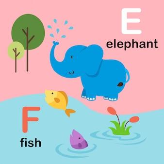 Alphabet letter f for fish, e for elephant, illustration