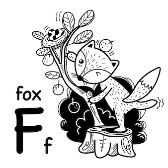 Alphabet letter f fox in hand drawn