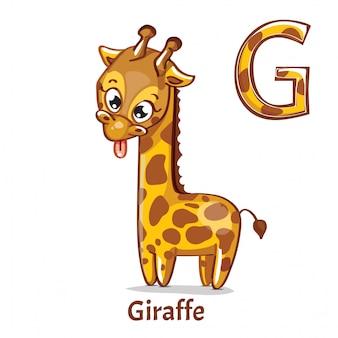 Алфавит, буква g жирафа
