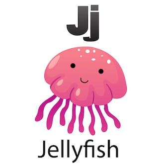 Alphabet letter  j-jellyfish