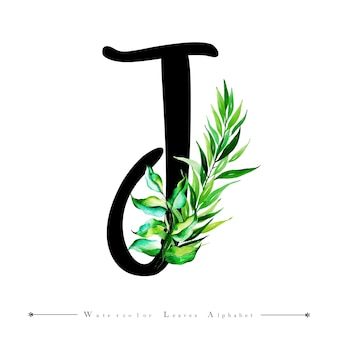 Alphabet letter j with watercolor leaves background