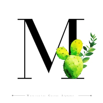 水色のサボテンとアルファベットの文字m