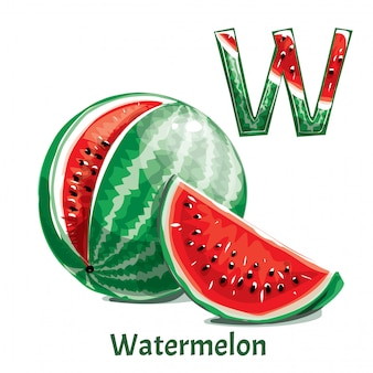 Alphabet letter w. watermelon