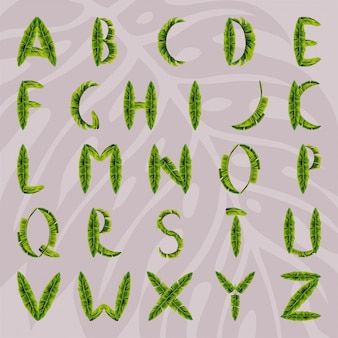 Alphabet made from palm leaves