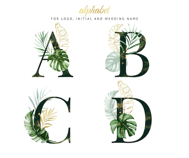 Alphabet set of a, b, c, d with green tropical watercolor. for logo, cards, branding, etc