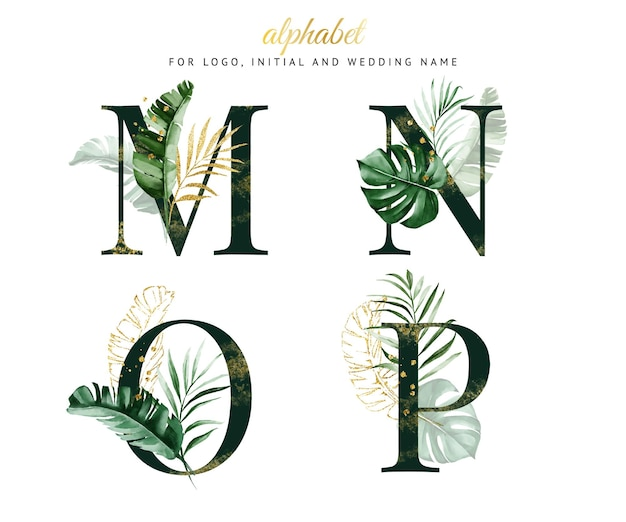 Alphabet set of m, n, o, p with green tropical watercolor. for logo, cards, branding, etc