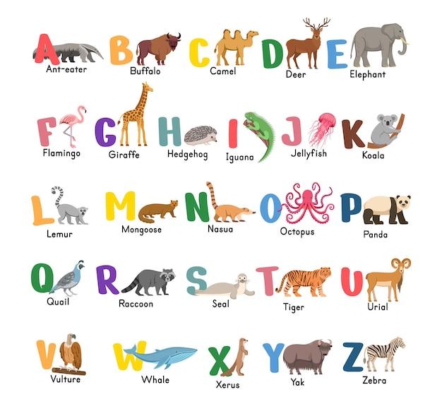 白で隔離の動物とアルファベット