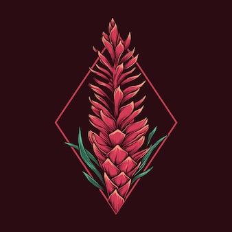 Рука рисунок старинные иллюстрации alpinia пурпура