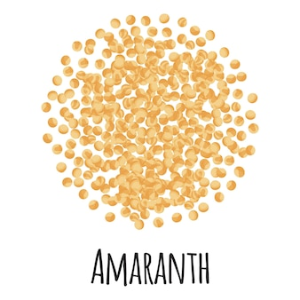 Amaranth for template farmer market design, label and packing. natural energy protein organic super food. vector cartoon isolated illustration.