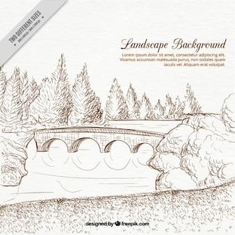 Amazing hand drawn landscape