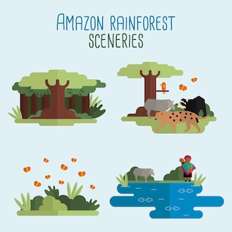 Amazon rainforest sceneries