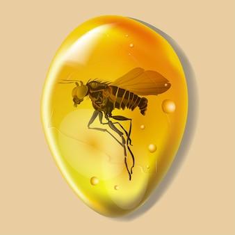 白い背景で隔離の昆虫と琥珀色の石。琥珀で凍った蚊やノミの古代と現代の昆虫。設計用の石油樹脂。宝石または鉱物の泡。株式ベクトルイラスト。
