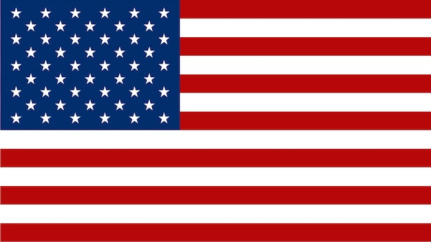 American flag on flat style