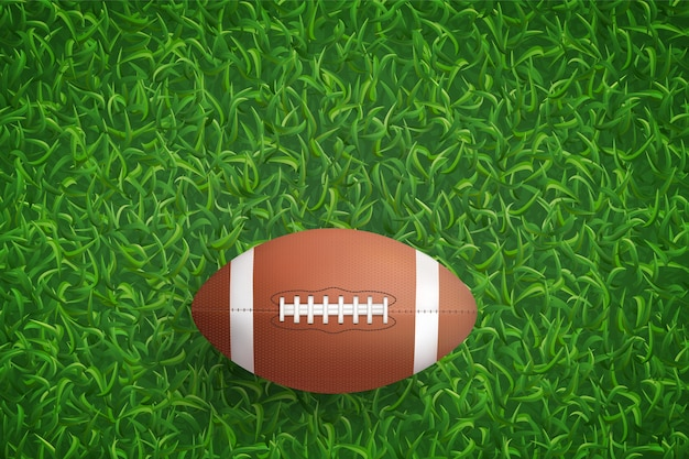American football ball on green grass.