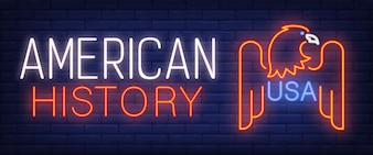 American history, USA neon text with eagle