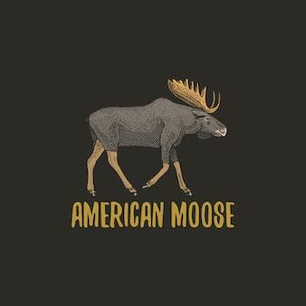 アメリカのムースやユーラシアのエルクが古いスケッチスタイル、ヴィンテージの動物で描かれた刻まれた手。ロゴ