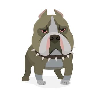 미국의 핏불 테리어. 개 캐릭터 만화 스타일 흰색 그림에 고립