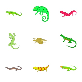 Amphibian icons set, cartoon style