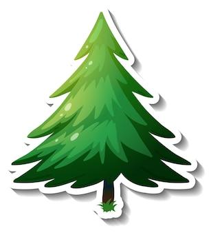 Наклейка вечнозеленое дерево на белом фоне