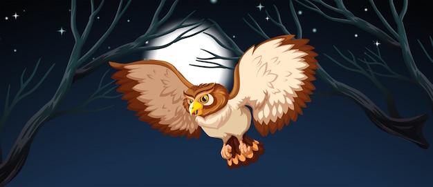 夜のフクロウの狩猟