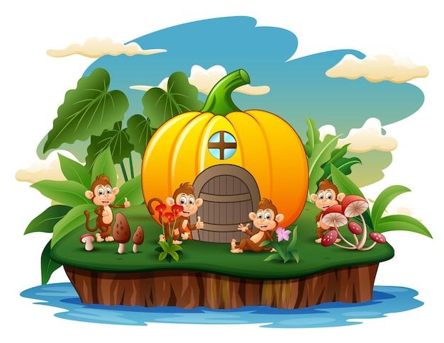 島に4匹のサルがいるカボチャの家