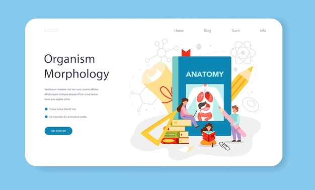 Anatomy school subject web banner or landing page. internal human organ studying. anatomy and biology concept. human body system. isolated flat vector illustration
