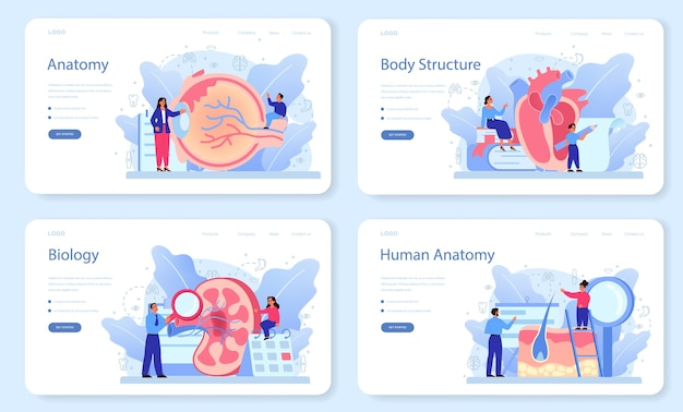 Anatomy school subject web banner or landing page set. internal human organ studying. anatomy and biology concept. human body system.