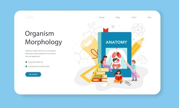 解剖学の教科のウェブバナーまたはランディングページ。人間の内臓の研究。解剖学と生物学の概念。人体システム。分離されたフラットベクトル図