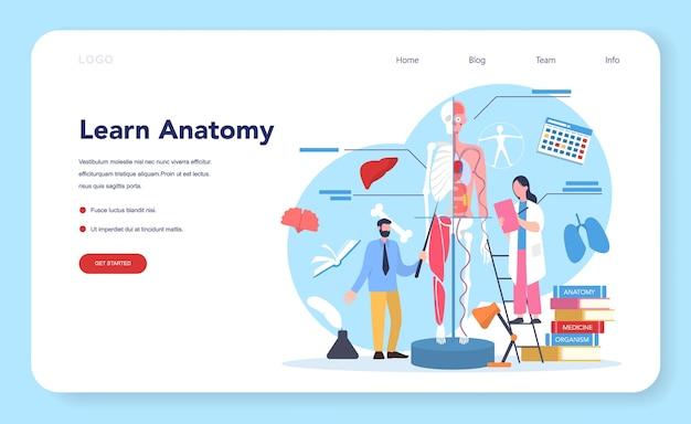 解剖学の教科のwebバナーまたはランディングページ。人間の内臓の研究。
