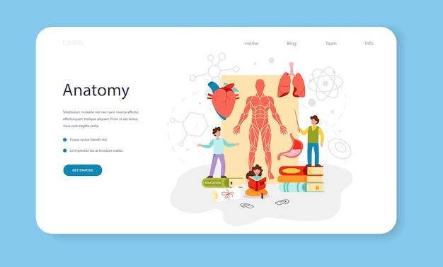 解剖学の教科のウェブバナーまたはランディングページの内臓