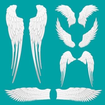 천사 흰색 날개 격리 설정합니다. 문신 또는 마스코트 드에 대한 전령 날개 세트. 다른 모양의 새 깃털. 추상 천사 날개 스케치 모음. 날개 레이블 표시. 삽화