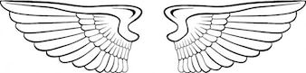 Angel wings American style icon vector
