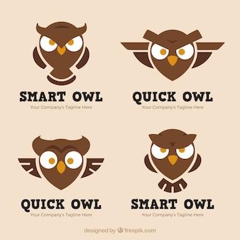Коллекция логотипа angry owl