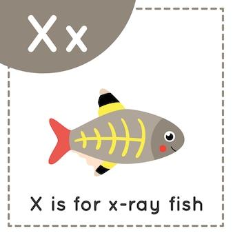 子供向けの動物アルファベットのフラッシュカード。学習文字 x。x は x 線魚です。