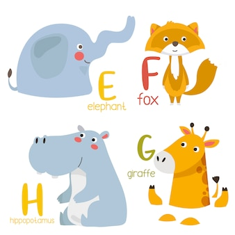 Animal alphabet graphic e to f. cute zoo alphabet with animals in cartoon style.