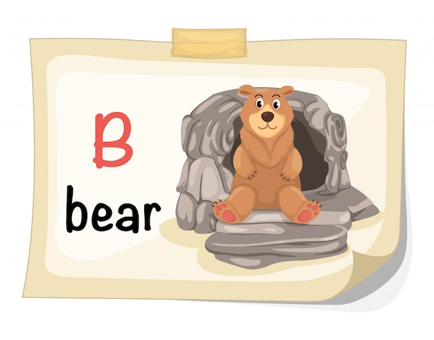 Animal alphabet letter b for bear illustration vector