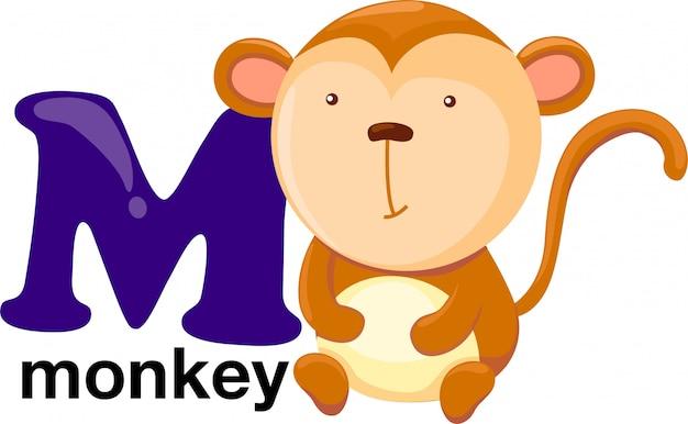 Animal alphabet letter - m
