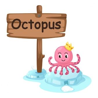 Animal alphabet letter o for octopus