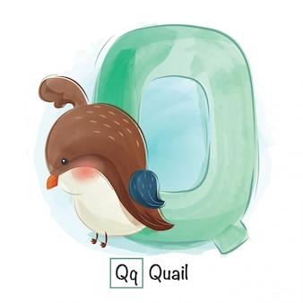 Animal alphabet - letter q