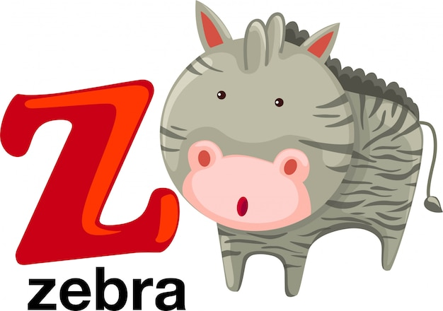 Animal alphabet letter - z